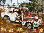Beetles Leaves Rusty Truc