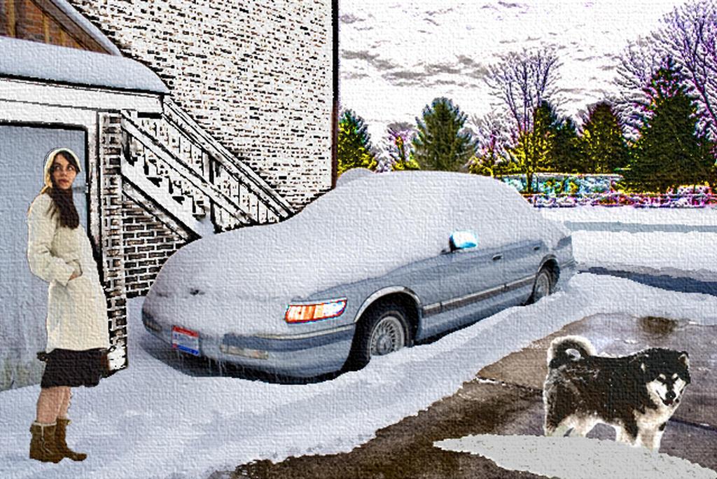 Driveway After a Snowfall