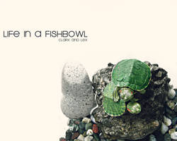Life In A Fishbowl by dadomz