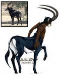 Palanca Negra - centauro