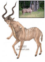 Kudu - centauro by MukuroY
