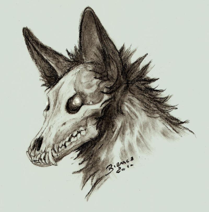 Skull by MukuroY