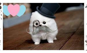 Love for Mustache Puppy! by AClockworkKitten