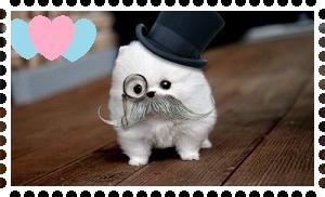 Love for Mustache Puppy! by AClockworkKitten