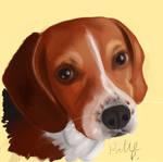 Molly by AClockworkKitten