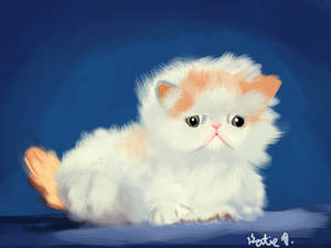 Persian Kitten (3DS)