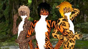 Leopard, Tiger, or Cheetah