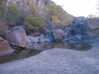 San Lorenzo Canyon spring by Johnithan