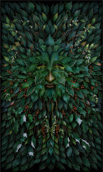 King of Holly