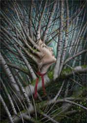 Nine sacred woods/Lady Birch by jeshannon
