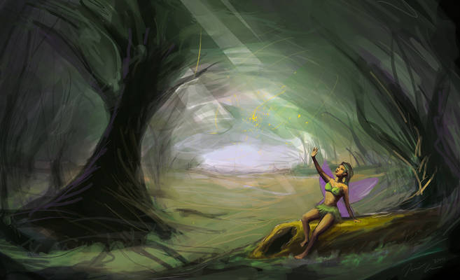 Fairy Forest Study