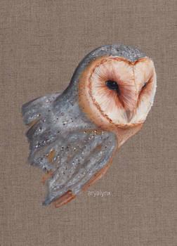 Acrylic Barn Owl 2
