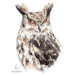 Watercolor Eagle Owl Karou