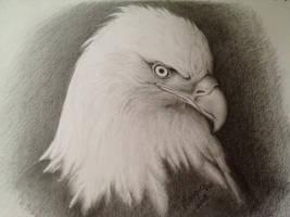 Traditional Art (Pencil)
