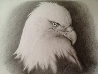 Traditional Art (Pencil) by KoolBluSky