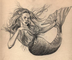 mermaid by Myrrhiam