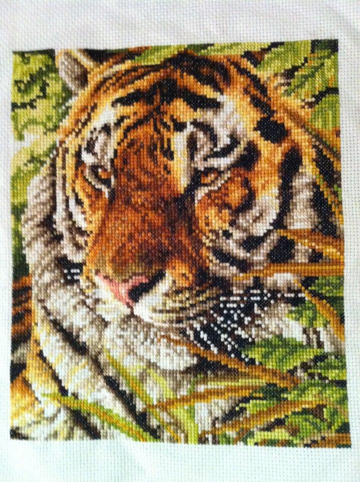 Tiger by ariesangel05