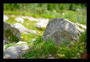 Stone by Il-Gritz