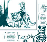 Calvin and Hobbes: Criticism