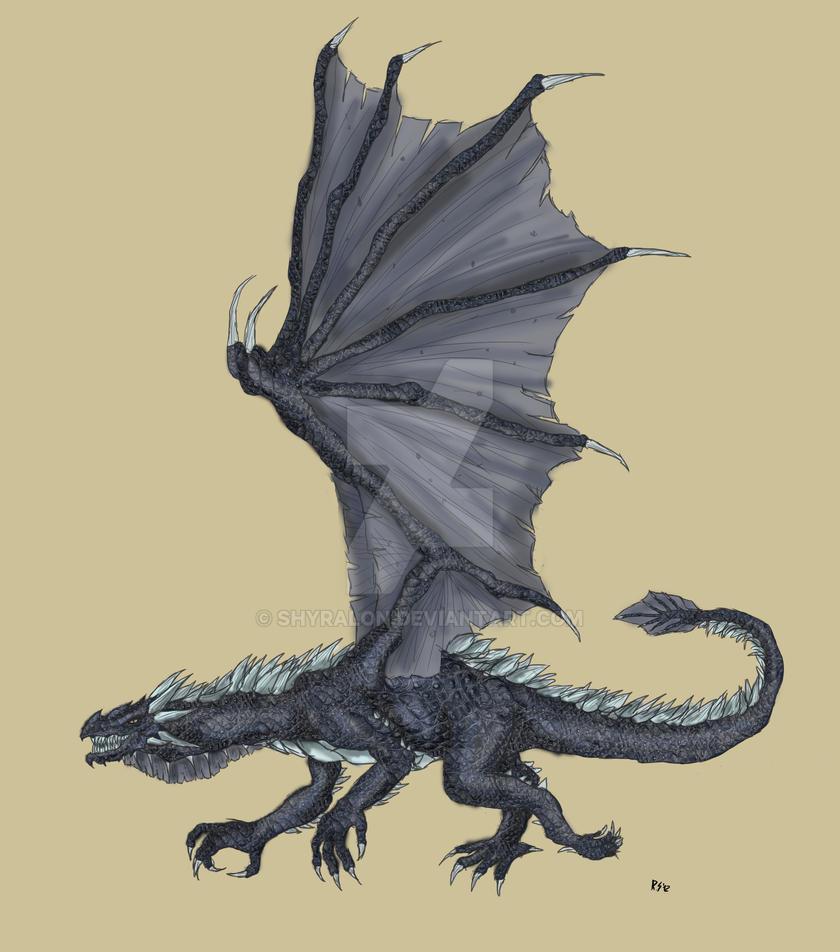 Dragon concept by Shyralon
