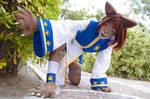 Uriko the cat