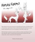 Kitvoren Human Forms