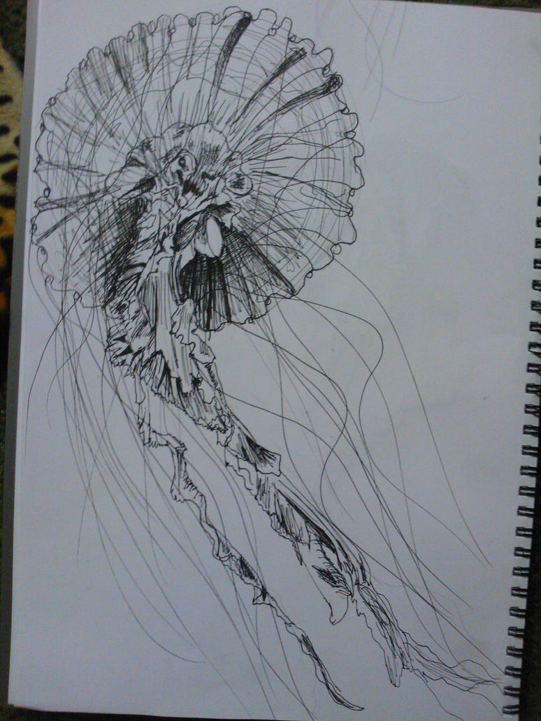 Line Art Jellyfish : Jellyfish sketch by sweetestmalificia on deviantart
