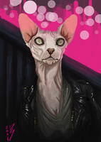 Pink Pussy | 2016 37 by Pierog321