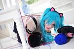 Hatsune Miku : Cat Girl