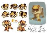 Pomeranian Character Design Pg1