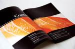 obento magazine 2