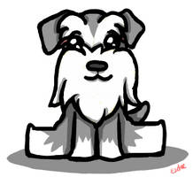Logan the Miniature Schnauzer by sdeleven
