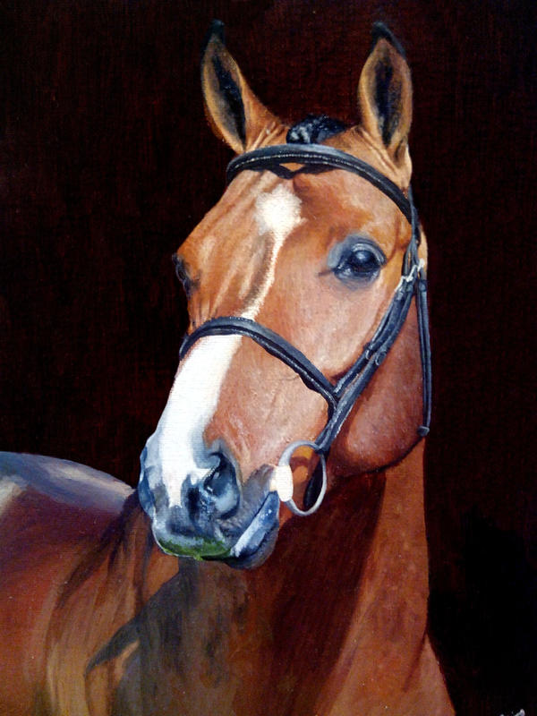 Horse Oil Painting by Blaze-Karma