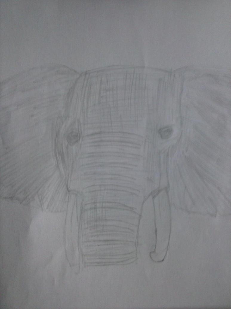 Elephant by Nazus-98