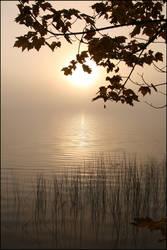 2008-282 Morning mist - Oct 2008