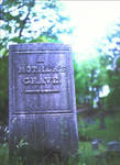 A mother's grave - May 2010