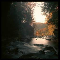 2012-298 Wolf Creek Glen by pearwood