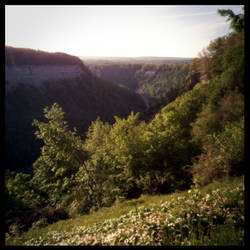 2013-145 Genesee River Gorge - pinhole by pearwood