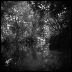 2013-239 Irondequoit Creek in Ellison Park by pearwood