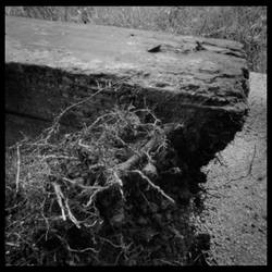 2013-241 Debris by pearwood