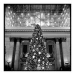 2017-343 The lights of Union Station