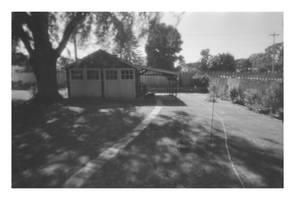 2018-200 My back yard by pearwood