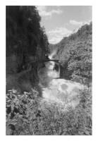 2018-209 Letchworth Lower Falls and footbridge by pearwood