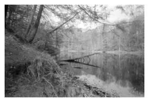 2020-117 The path along Durand Lake