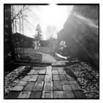 2020-126 The gray brick path