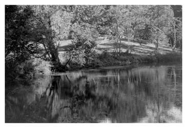 2020-242 Pat Lake at Durand Eastman Park