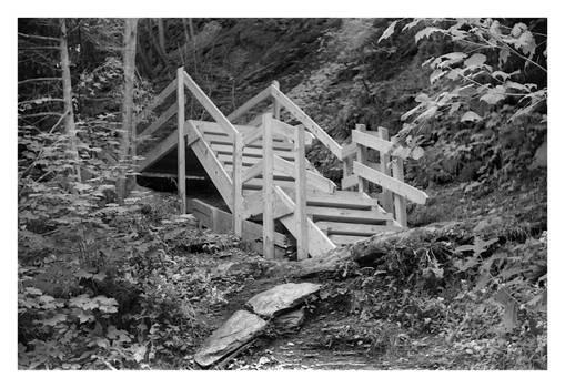 2020-268 Wooden steps