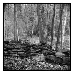 2021-149 Ruins along the way by pearwood