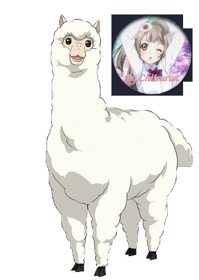 Anthro alpaca