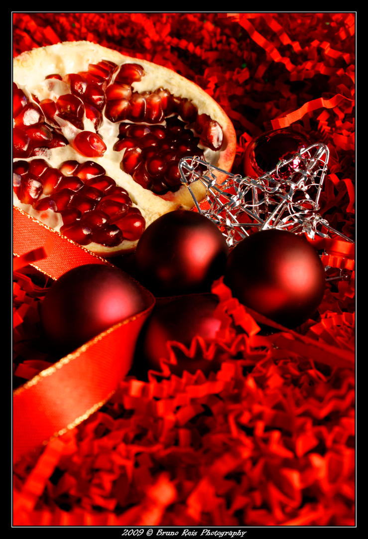 Christmas Pomegranate I by tolecnaL